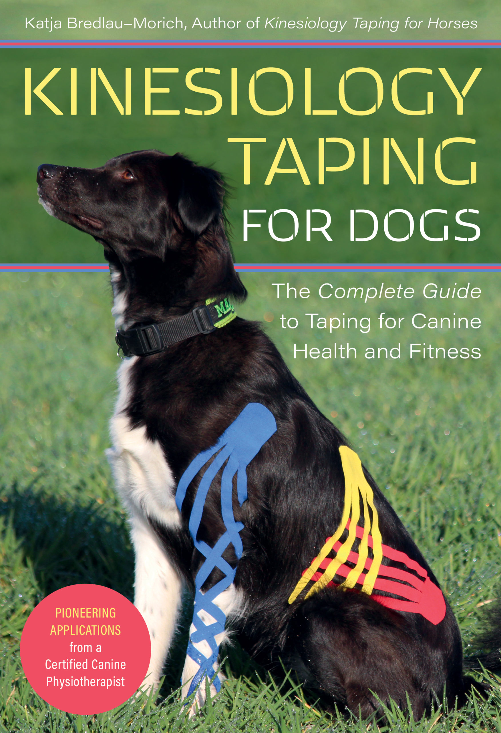 Kinesiology Taping for Dog